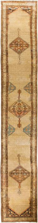 ANT119423 Persian Malayer