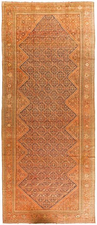 ANT125426 Persian Malayer