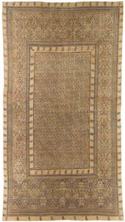 ANT174279 Persian Dorokhsh