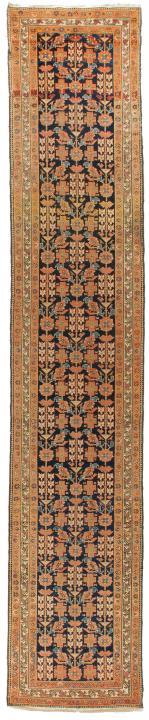 ANT174317 Persian Malayer