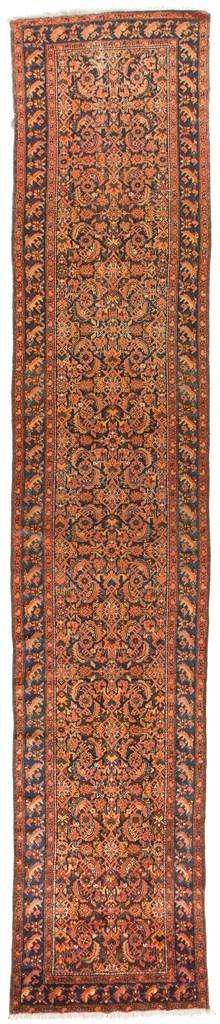 ANT174318 Persian Malayer