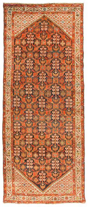 ANT174320 Persian Malayer