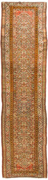 ANT174630 Persian Malayer