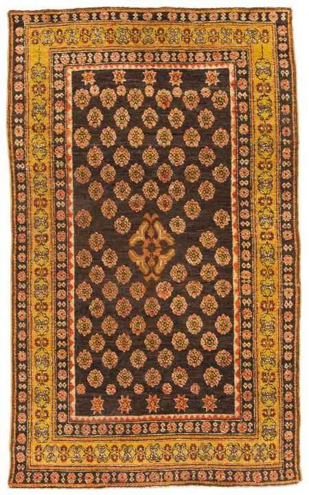 ANT184954 Agra