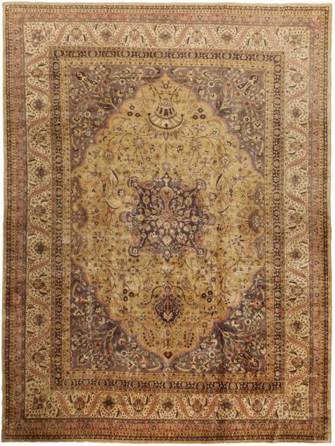 ANT125513 Agra