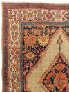 """ANT174631 Persian Malayer - Antique 9' 1"""" x 12' 1"""""""