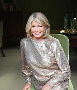 Martha Stewart Designer Rugs
