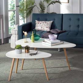Indoor Furniture Care and Cleaning